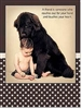 GREETING CARDS- New Baby, Friendship